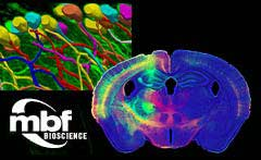 Imaging  and Image Analysis software