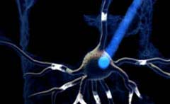 Optogenetics Mightex